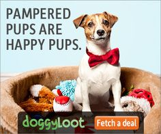Doggyloot is the top flash sales site for dogs and dog owners that offers discounts on dog-related products to members nationwide. Can Dogs Eat Corn, Boy Dog Clothes, Free Baby Samples, Jamba Juice, Tri Cities, Free Dogs, Love Pet, Free Baby Stuff, Dog Owners