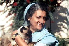 almost famous cats : Indira Gandhi.
