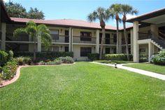 311 Hammock Pine Blvd, Clearwater, FL 33761