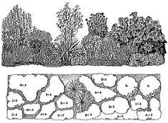 Orange/Yellow Border - Downloadable Landscape Plans – Sheridan Nurseries