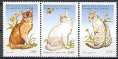 Comoros.      75 f Silver Tabby 150f Turkish Van 200f Somali 200f European 375f Japonese Bobtail 375f Egyptian Mau  Cats on stamps index