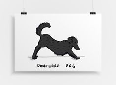 Wild Yoga 11x14 Print  Yoga Poster  Downward Dog Pose  by ebrownm
