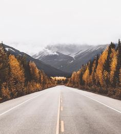 Photo by Kyle Houck | Fantasy Road Trip | Road Trip | Road | Road photo | on the road | the open road | chasing the light | drive | travel | wanderlust | mountains | fall | trees | adventure | landscape photography | Schomp MINI