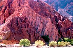 Risultati immagini per jujuy argentina Places Around The World, Travel Around The World, Around The Worlds, Chile, Argentina Travel, World Photo, Wild Nature, Beautiful Places To Visit, South America