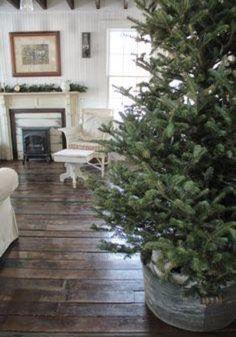 Christmas tree in a tin barrel