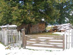 A natureza. Arch, Outdoor Structures, Garden, Nature, Photos, Garten, Lawn And Garden, Gardening, Outdoor