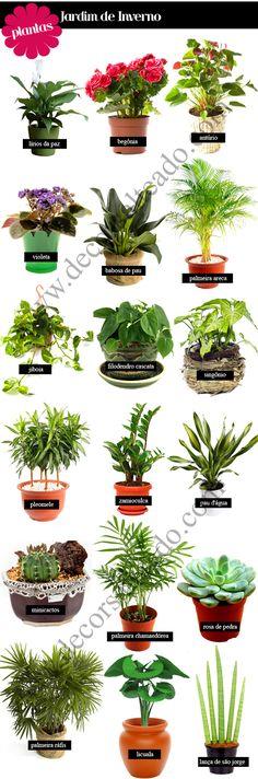 Jardim de Inverno – Modelos, Dicas e Sugestões de quais planta usar!