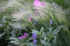 Once in sweden ~~ flowers