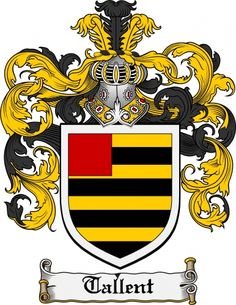 Tallent Coat of Arms / Tallent Family Crest. Black and yellow stripes. that explains so much. Irish Coat Of Arms, Family Shield, Go Irish, Family Crest, Crests, Yellow Stripes, Zebras, Old Things, History Medieval