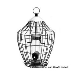 Natures Feast Royal Squirrel Proof Seed For Wild Birds Natures Feast Seed offers an attractive design feeder… Bird Feeders Amazon, Bird Feeders For Sale, Wild Bird Feeders, Bird Feeder Plans, Homemade Bird Feeders, Small Birds, Country Outfits, Wild Birds, Squirrel
