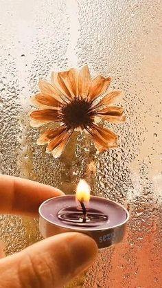 Beautiful Photos Of Nature, Beautiful Fantasy Art, Short Status, I Love Rain, Good Night Gif, Good Morning Quotes, Love Flowers, Videos, Wall Papers