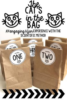 theteachyteacher: Science, Cat's In The Bag, & Being Quirky