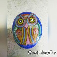 #owl #baykuş #taştanhayaller #taşboyama #stoneart #taşboyamasanatı #stonepainting #rockpainting #stoneowl #rockowl #paintedstones