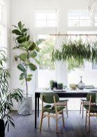 die besten 25 luft reinigen pflanzen ideen auf pinterest. Black Bedroom Furniture Sets. Home Design Ideas