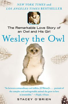 Wesley the Barn Owl:  The Remarkable Love Story of an Owl and His Girl by Stacey O' Brien.  Chronicles the rescue of a barn owl.  I learned so much about owls from this wonderful book.