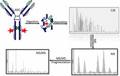 #AChem: High-Resolution Capillary Zone Electrophoresis with Mass Spectrometry Peptide Mapping of Therapeutic Proteins: Peptide… #MassSpec