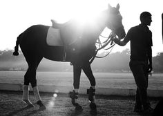A polo pony and his groom after a long day of polo at British Polo Day in India.