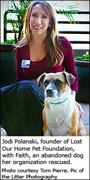 In 2008, Jodi Polanski founded Lost our Home Pet Foundation & has rescued over 2000 dogs like Faith here when their people lost homes to foreclosure.  Great charity!!
