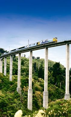 """The Passenger Train """"Overlander"""" bewteewn Auckland & Wellington Rtn, crosses many structures. I believe this viaduct is in the Rangatikae Region. (Can't remember) Help appreciated please. (Pic curation & caption: @BillGP)"""