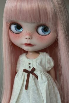 Flickr Blythe Doll 11 inches