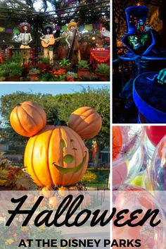 We suggest heading to Walt Disney World or Disneyland in the fall. Why? You'll see how to Halloween at Disney. It's not-so-scary and dripping in magic!