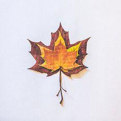 Photograph - Autumn