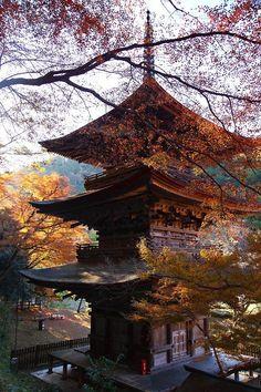 "traditional-japan: ""Via Pinterest "" More More"