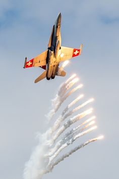 Swiss Air Force F/A 18 Hornet releases some Flares @ AIR 14 by Michael Angst / Airplane Fighter, Airplane Art, Military Jets, Military Aircraft, Swiss Air, Fire Powers, Jet Plane, Air Show, War Machine