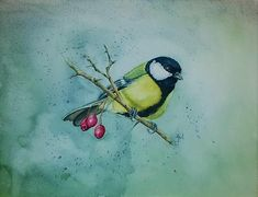 The Great tit watercolor little bird chickadees painting