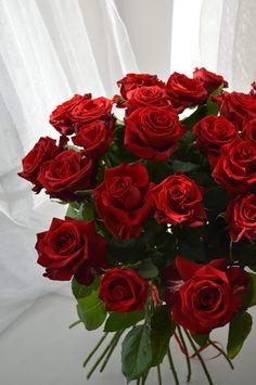 Bouquet, Rose, Flowers, Plants, Pink, Bouquet Of Flowers, Bouquets, Plant, Roses