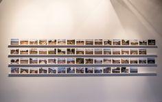 Bienalin iki yıla yakın süren hazırlık sürecinde demokrasdı, ifade özgürlüğü, kamusal ve müşterek alan tanımları, kentsel dönüşüm, sanat ve siyaset arasındaki ilişki üzerine düşünen bienal, şimdi ise verimli bir tartışma ortamı yaratmanın hayalini kuruyor #artfulliving #sergi #exhibition #contemporaryart #istanbulbienali #galatarumilköğretimokulu