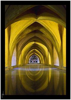 Alcázares de Sevilla  Una vista de los baños del Alcazar de Sevilla