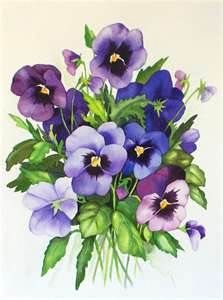 Pansies in Watercolor Watercolor Cards, Watercolor Flowers, Watercolor Paintings, Watercolors, Art Floral, Botanical Illustration, Botanical Prints, Impressions Botaniques, Vintage Flowers