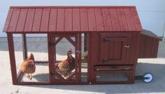 Even city chickens will feel at home in the Atlanta Chicken Coop. Created specially for small, urban farmers, the coops hold up to four animals. The Atlanta coop has two doors so you always have easy access to your animals. A roomy interior gives your ani