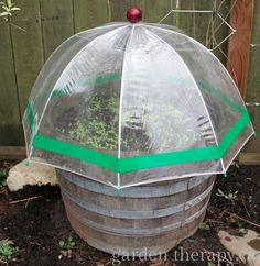 Umbrella Greenhouse project Garden Therapy