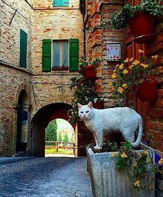 Treia, Macerata, Marche