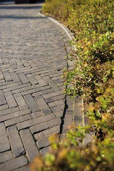 Terra Lucca Antica, volg de link voor een prijsopgave.