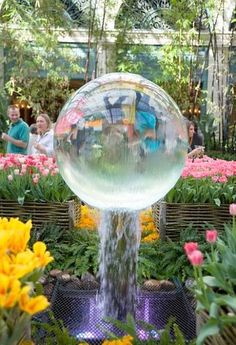 Tips for city getaways - Bellagio Botanical Garden, a romantic place
