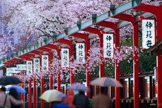 Info Lowongan Kerja Magang ke Jepang, seputar magang jepang, lowongan kerja luar negeri >>> www.pemaganganjepang.com