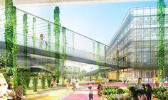 En plein coeur de Shanghai, un projet de ferme urbaine de plus de 100 hectares pour une agriculture durable et l'indépendance alimentaire.
