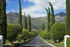 Sitting in the magnificent Franschhoek Valley in South Africa's Western Cape, her lush vines spread across with gentle vistas over the valley floor, with the rugged mountains beyond. This is heartland South African wine country at its very finest. Provence, Vineyard, Sidewalk, Outdoor, Outdoors, Vine Yard, Side Walkway, Sidewalks, Vineyard Vines