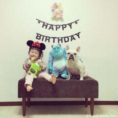 Happy 2nd Birthday❤️ #frenchbulldog #frenchie #dog #daughter #フレンチブルドッグ #女の子 #誕生日 #happybirthday
