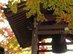 Arashiyama 2011, Kyoto