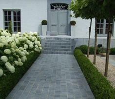 contemporary garden design 30 Fabulous Stepping Stones Pathway Design Ideas For Your Front Yard Front Garden Path, Front Path, Front Door Steps, Front Gardens, Outdoor Gardens, Contemporary Garden Design, Landscape Design, Stepping Stone Pathway, Brick Pathway
