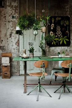 Plants And Green Motifs In Home Decor | Feng Shui Interior Design | The Tao of Dana