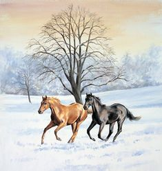 """Winter Gallop"" by Caroline Cook"