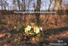 Prosperity of Life | Rachel Krider | Shane Krider | Personal Development | Success Education | Inspiration | Graphic Design | Quote | Struggle to Success Story