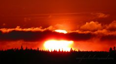 sunrise Nature Photography, My Photos, Sunrise, Celestial, Outdoor, Outdoors, Nature Pictures, Outdoor Games, Wildlife Photography