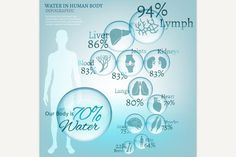 Water in Human Body. Sport Icons. $5.00