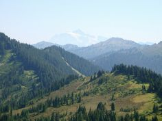Canyon Ridge Trail. North Cascades/Mt Baker Hwy 6miles. NWFP